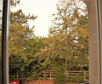 Location Studio 1 pièces Coye-la-Forêt (60580) - Proche Gare et forêt