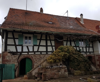 Location Maison 3 pièces Mattstall (67510) - MATTSTALL